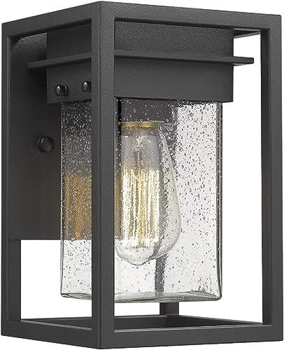 Osimir 1 Light Outdoor Wall Lantern