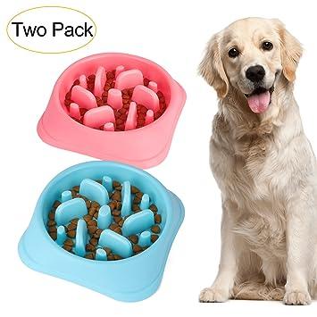 Amazoncom Jasgood Dog Feeder Slow Eating Pet Bowl Eco Friendly
