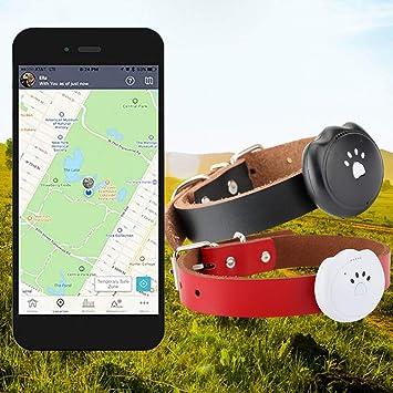 GPS Tracker Tractive 3G Dog Rastreador de GPS Buscador de Mascotas el Collar Perro GPS Adjunto Archivo Tiempo Real gsm Control Bluetooth Anti-perdido ...