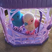 Amazon Com Little Live Pets Bird With Cage Ruby Belle