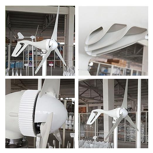 96e455f4a78 Aerogenerador TOPQSC Generador de Turbina Eólica 300W DC 24V Generador de  Viento con Alta Eficacia 3 Hojas Turbina de Viento Suministro de Energía  Sistema ...