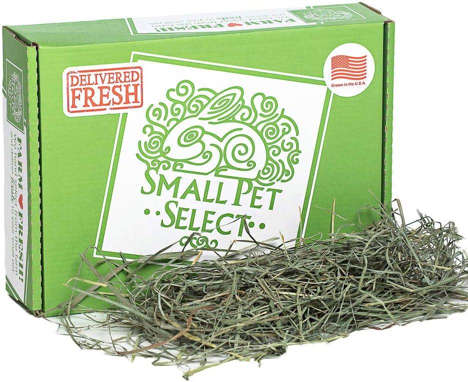 Small Pet Select Orchard Medley Grass Hay Pet Food, 2 lb.