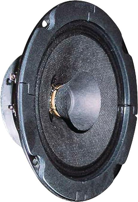 Visaton VS-BG13P - Altavoces (1.0 Canales, 20 W, 120 – 20000 Hz, 8 Ω)