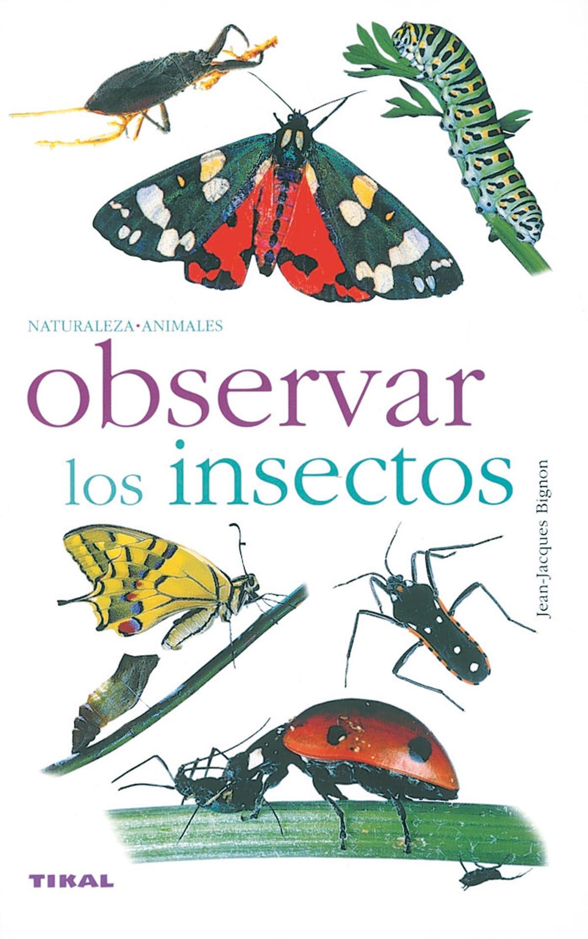 Observar Los Insectos(Naturaleza-Animales): Amazon.es: Bignon, Jean-Jacques: Libros