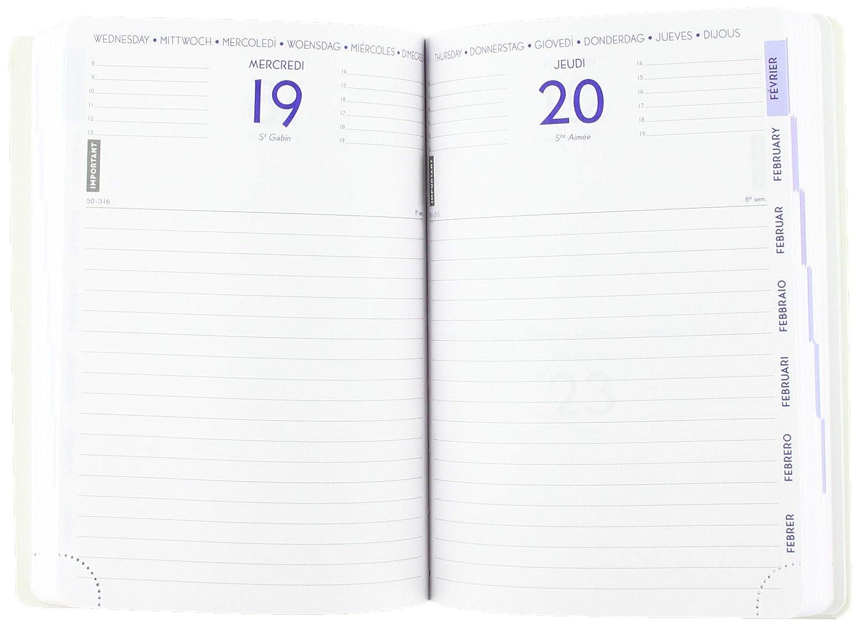 Exacompta 184463E - Agenda 1 día por página Forum 12 x 17 cm ...