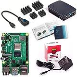 Vilros Raspberry Pi 4 Model B Basic Starter Kit con Funda Oficial Raspberry Pi (Negro/Gris), Negro/Gris, 2GB