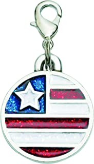 product image for Rockin' Doggie Pewter Collar Charms - Flag