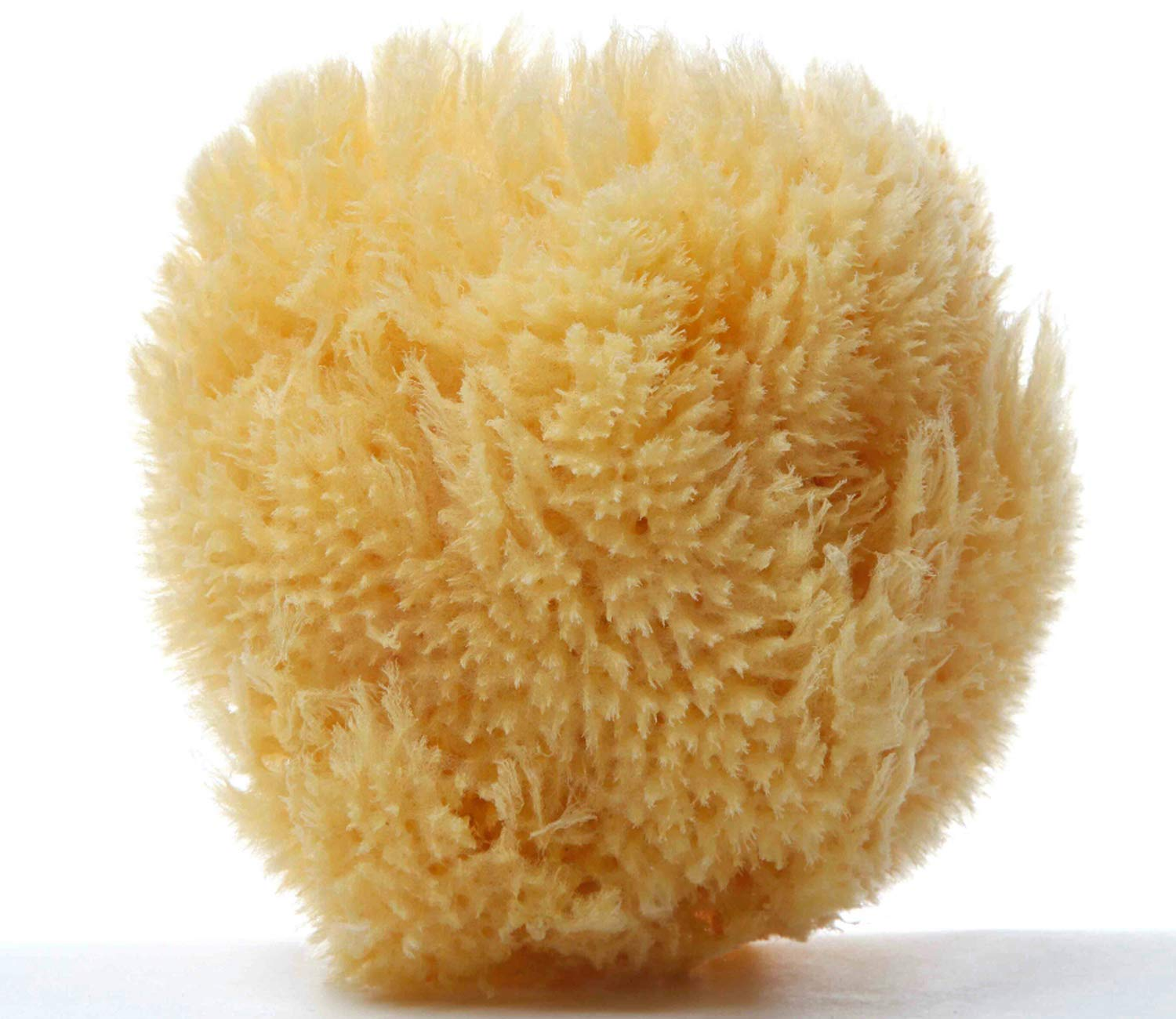 Sea Nature Natural Sea Sponge Brand 5-6 Grada Type Home Cleaning Body Bath Ideal Baby Bathing Face Cleaning Guaranteed