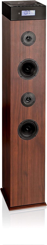 Roadstar Tspk 990cdbt Bluetooth Lautsprecher Tower Mit Integriertem Subwoofer Cd Player Usb Fm Pll Radio Fernbedienung Holzgehäuse Aux In Holzfarben Schwarz Audio Hifi