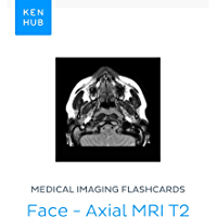 Medical Imaging flashcards: Face - Axial MRI T2: Learn all bones, muscles, organs and mri on the go (Kenhub Flashcards…