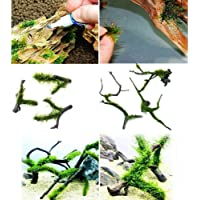 Moss Glue Aquarium Cyanoacrylate Adhesive/Glue Decoration for Aquarium Decor Fish Tank