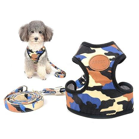 Ranphy - Arnés para Perro pequeño, diseño de Camuflaje sin Tirar ...