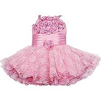 Wish Karo Baby Girls Partywear Frock Dress (red/Pink -net)
