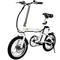 16'' Outdoor Folding Electric Bicycle Collapsible Frame E-Bike with Lithium Battery and Handlebar Display (36V 250W)