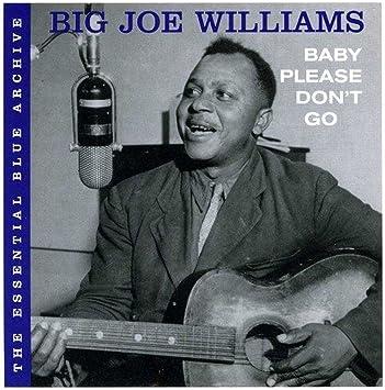 Amazon | The Essential Blue Archive: Baby Please Don't Go | Big Joe Williams | 輸入盤 | 音楽
