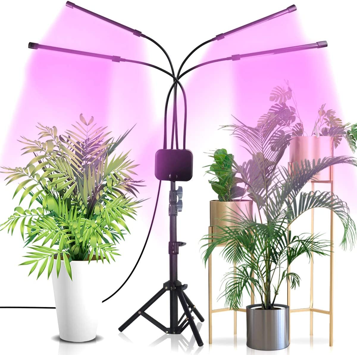 Bozily Led Grow Lights for Indoor Plants Full Spectrum 300W, Sunlike Plant Growing Light Fixture Support Outer for Indoor Plants Seedlings,Growing,Blooming and Fruiting