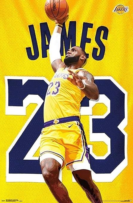 dbb7eb2eaf0b0 Amazon.com: Lebron James - Layup - NBA Poster - Los Angeles Lakers ...
