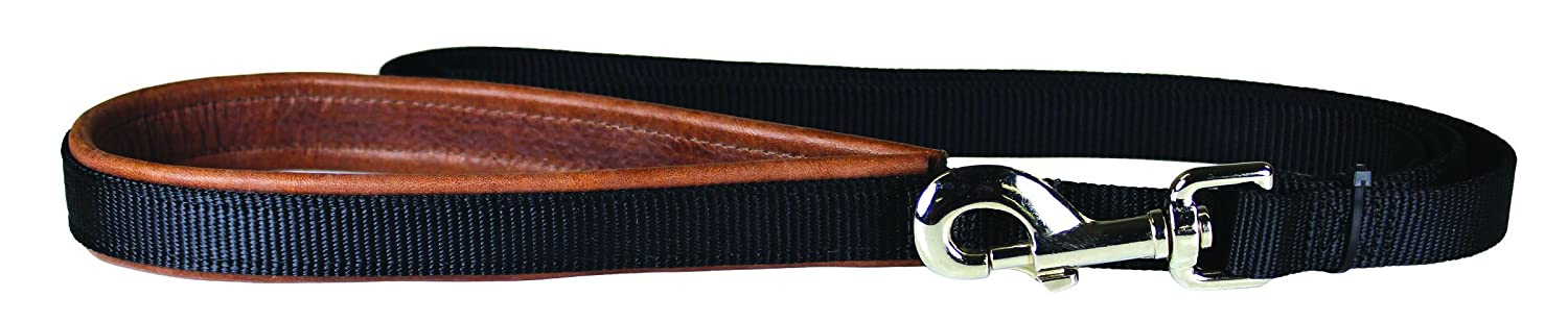 OmniPet 6278-TB Luxe Nylon and Leather Dog Leash, Tobacco