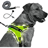MelonTaiL Light Up Dog Harness with Bungee Leash-Rechargeable LED Light Dog Vest for Night Walking-Reflective Illuminated Har