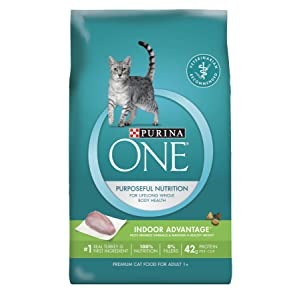 Purina ONE Premium Cat Food
