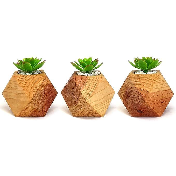 Macetas para cactushttps://amzn.to/2Pzv5uo
