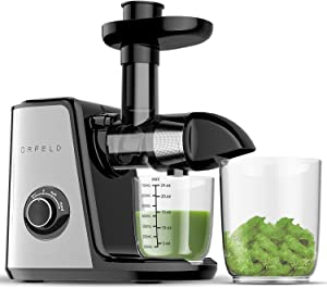 Juicer Machines, ORFELD Slow Masticating Juicer Extractor Easy to Clean, Quiet Motor and Reverse Function, Cold Press Juicer for Vegetable and Fruit Carrots, Oranges and Celery etc (Silver)