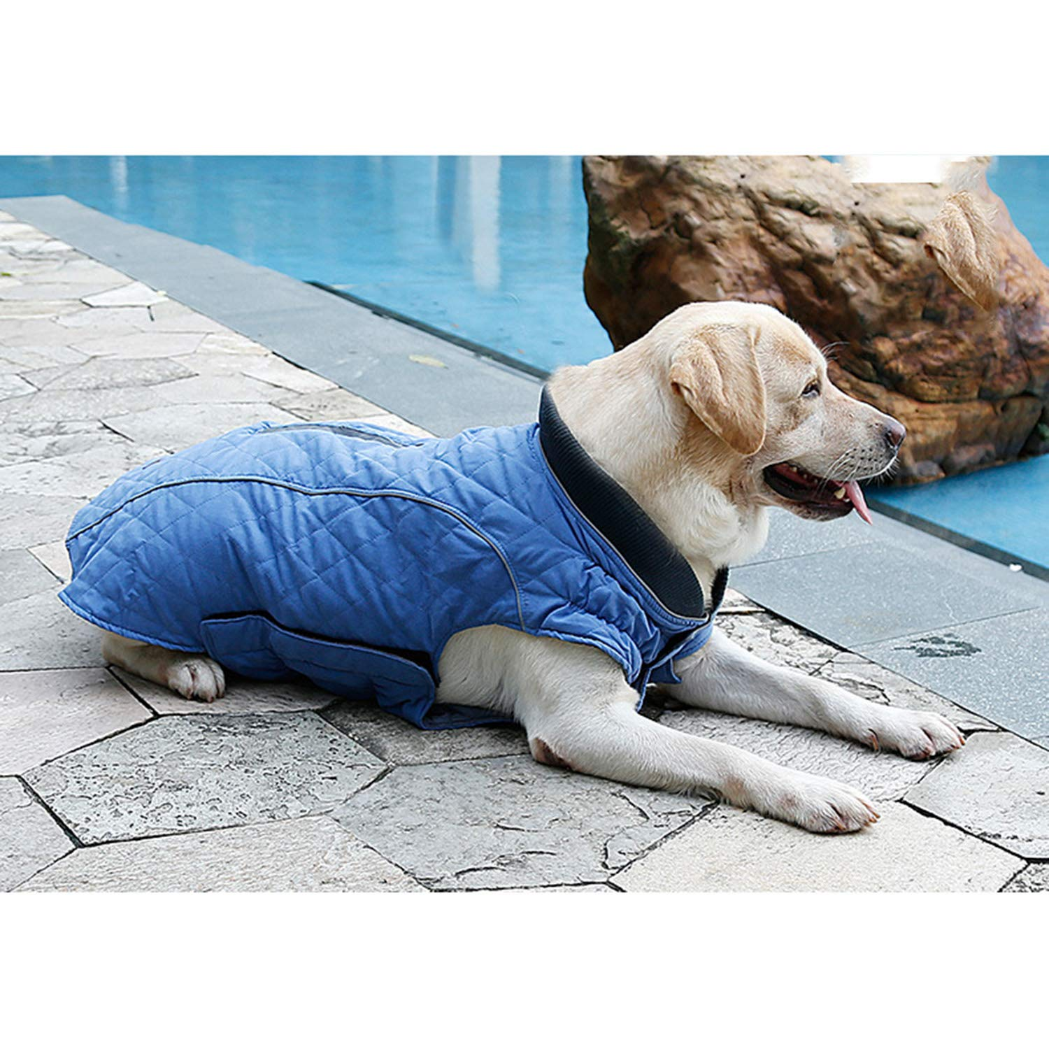 bluee XXL bluee XXL Dog Outdoor Warm Clothing Retro Style Warm Pet Clothes Autumn and Winter Pet Jacket Pet Supplies Pet Clothing