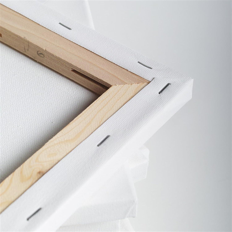 100/% coton 30x30 cm 10 TOILES ART-STAR sur chassis