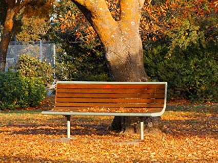 Amazon Com Laminated 32x24 Inches Poster Autumn Park Bench