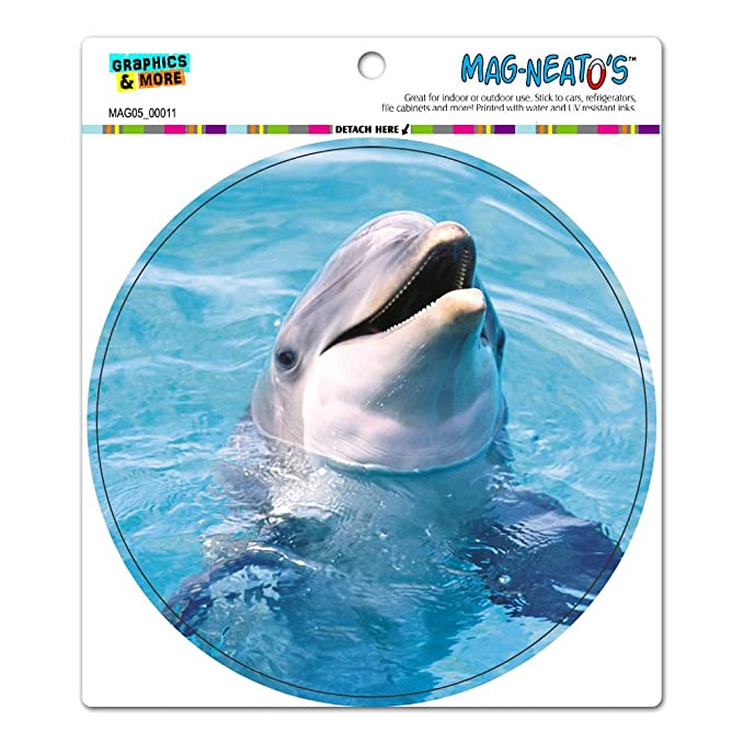 dolphin water circle mag neato s tm automotive car bonnet boot
