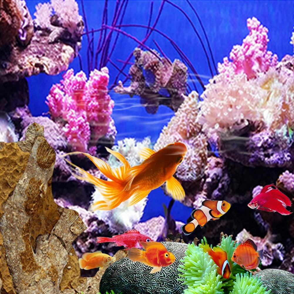 Leo565Tom Acuario pecera Fondo 61 x 30 cm / 91 x 50 cm Pintura Decorativa de PVC Grueso Coral Mar Vivido Jellyfish Seabed Pegatina Acuario océano Paisaje ...