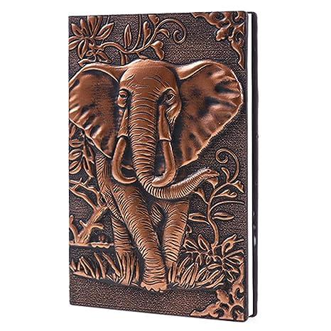 consigli per uscire con un vecchio diario di elefante donna