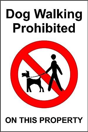No perro caminar paseo de perros prohibido señal de ...