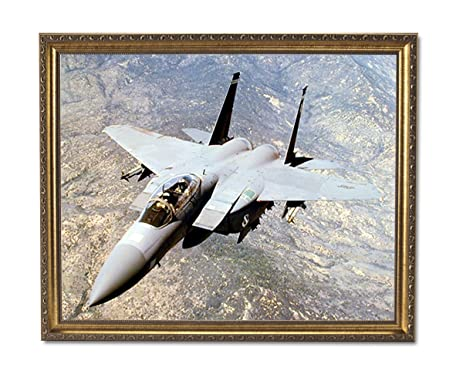 Amazon.com: F15E Strike Eagle Jet Airplane Wall Picture Gold Framed ...