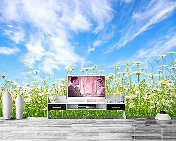 Jonp 3D Tapete Hintergrundbild Wallpaper Benutzerdefinierte Natur Wallpaper  Feld Gänseblümchen Himmel Wolken Blumen Wallpaper 3D Foto