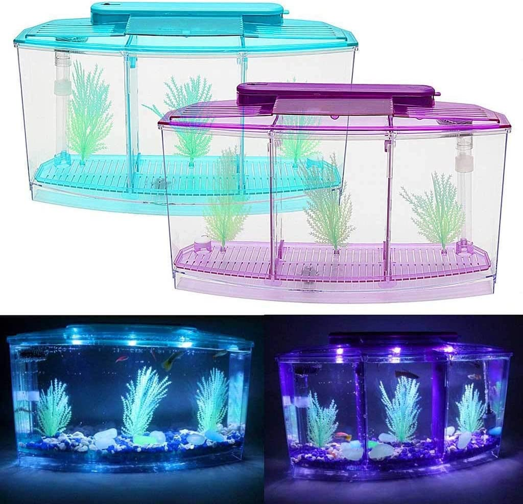 Kuerqi 1 Gallon Arylic Aquarium Kit Fish Tank with 6 LED Lighting and Tank Divider Filter for Starter Beginners or Kids Children as Christmas Thanksgiving Gift and Room Decor