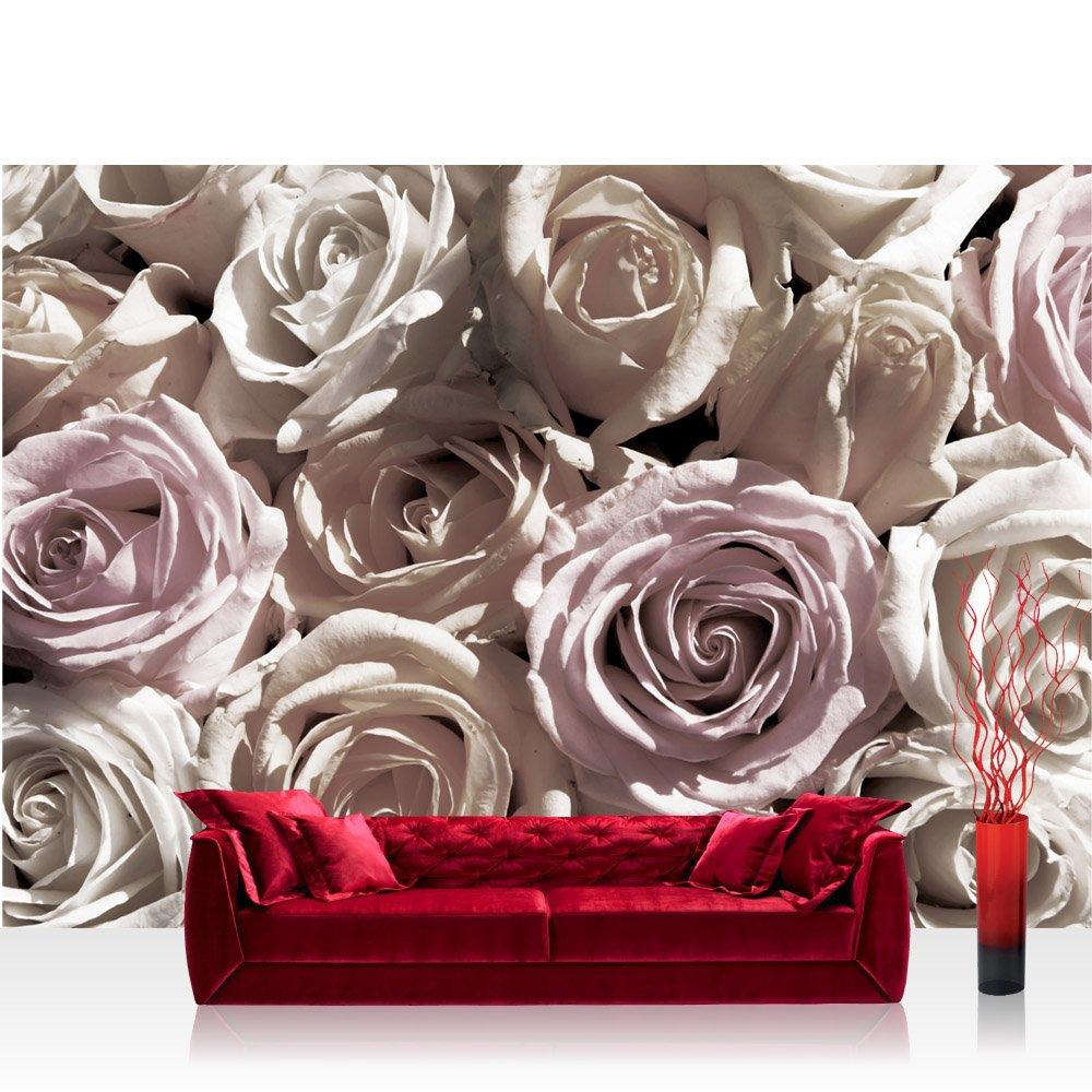 Vlies Fototapete 416x254cm PREMIUM PLUS Wand Foto Tapete Wand Bild Vliestapete - Blumen Tapete Rose Blume Blüte Blätter Liebe sepia - no. 2463