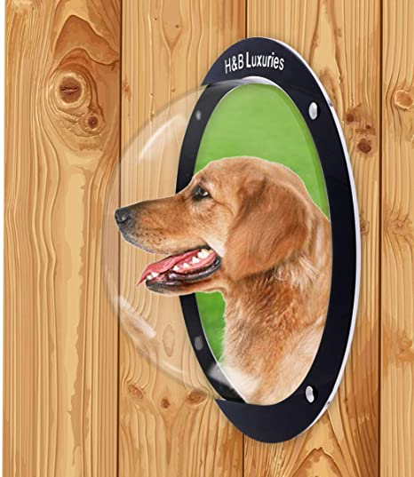 H&B Luxuries Durable Acrylic Dome Dog