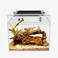 """Mini Reptile Terrarium, 8"""" x 8""""x 8"""" Mini Reptile Tank with Full View Visually Appealing,Crystal Explosion Proof Glass…"""