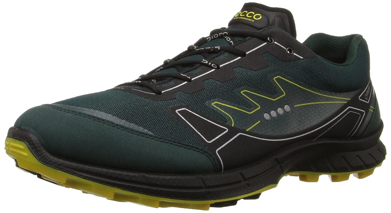 846ec81bd202c Amazon.com | ECCO Men's Biom FL Gore-Tex-M Trail Running Shoe ...
