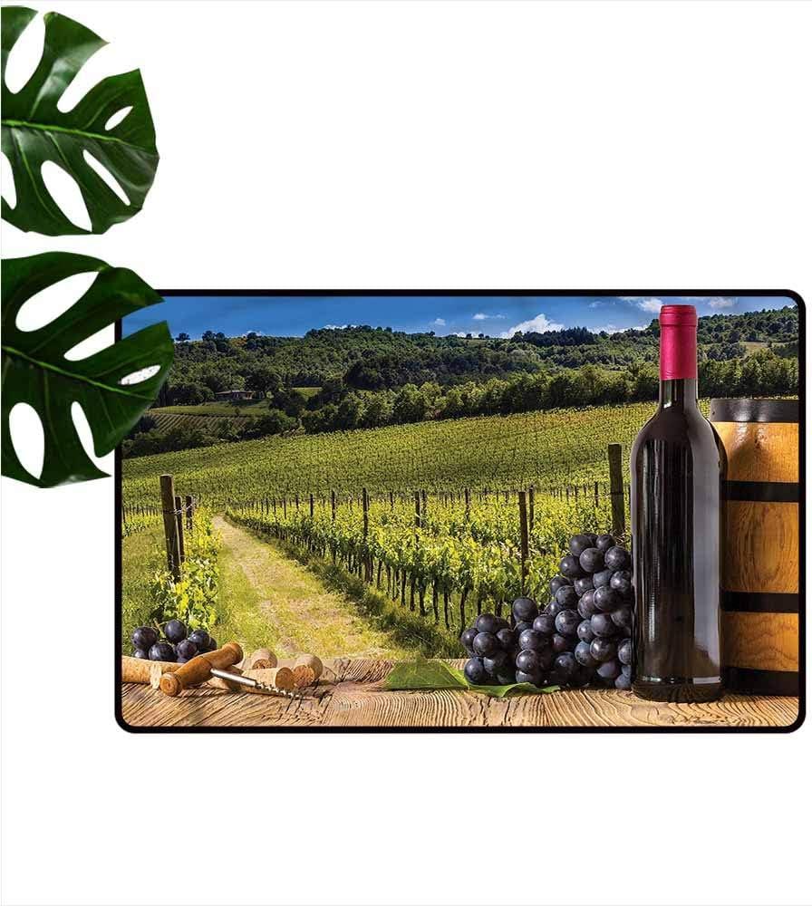 DONEECKL - Felpudo para Exteriores, diseño de viñedo, Color Morado: Amazon.es: Jardín