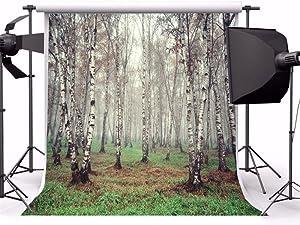 Laeacco 6x6ft Vinyl Backdrop Morning Fog Forest Birch Trees Photography Background Nature View Grove Grassland Scene Children Portraits Backdrop TV Video Shoot Backdrop Studio Props