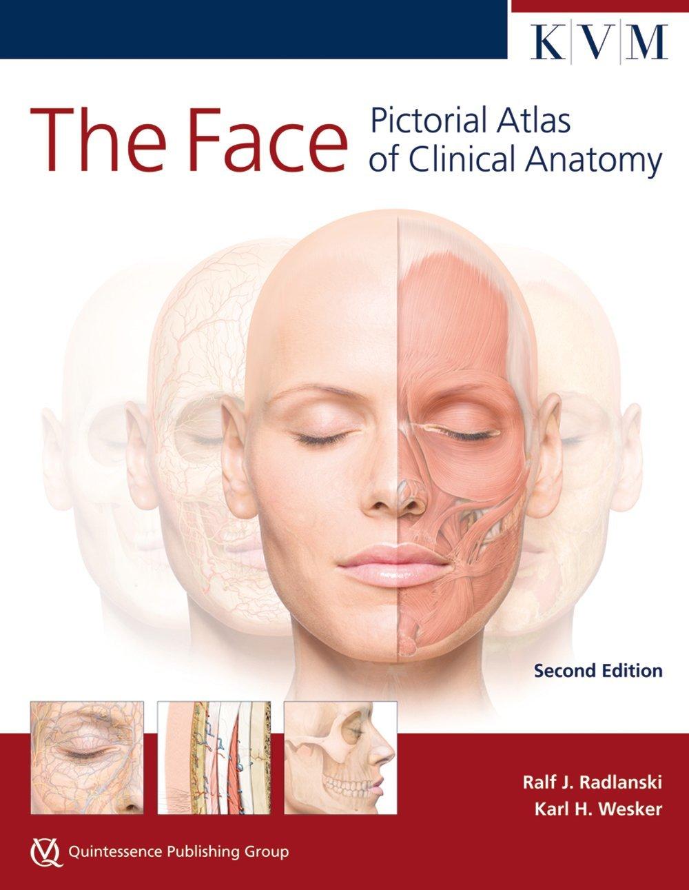 The Face Pictorial Atlas Of Clinical Anatomy Kvm Edition Radlanski