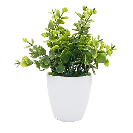 OFFIDIX Mini pianta di piante plastiche di piante con i contenitori ...