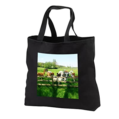 3dRose RinaPiro - Domestic Animals - Alpaca. Lama. South America. Farm. - Tote Bags