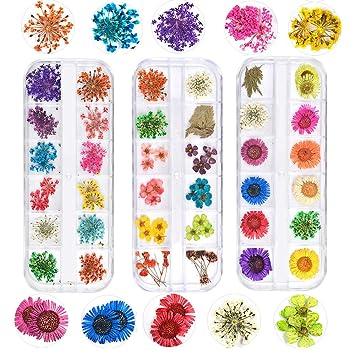 3 caja 36 colores Real Flores secas 3D Nail Art Stickers ...
