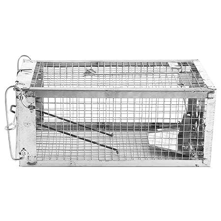 Trampa Jaula, Mouse Trap Cage, 11x4.7x4.3 pulgada sola puerta Rat ...