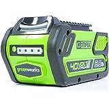 Greenworks 40V 5.0 AH Lithium Ion Battery LB40A010