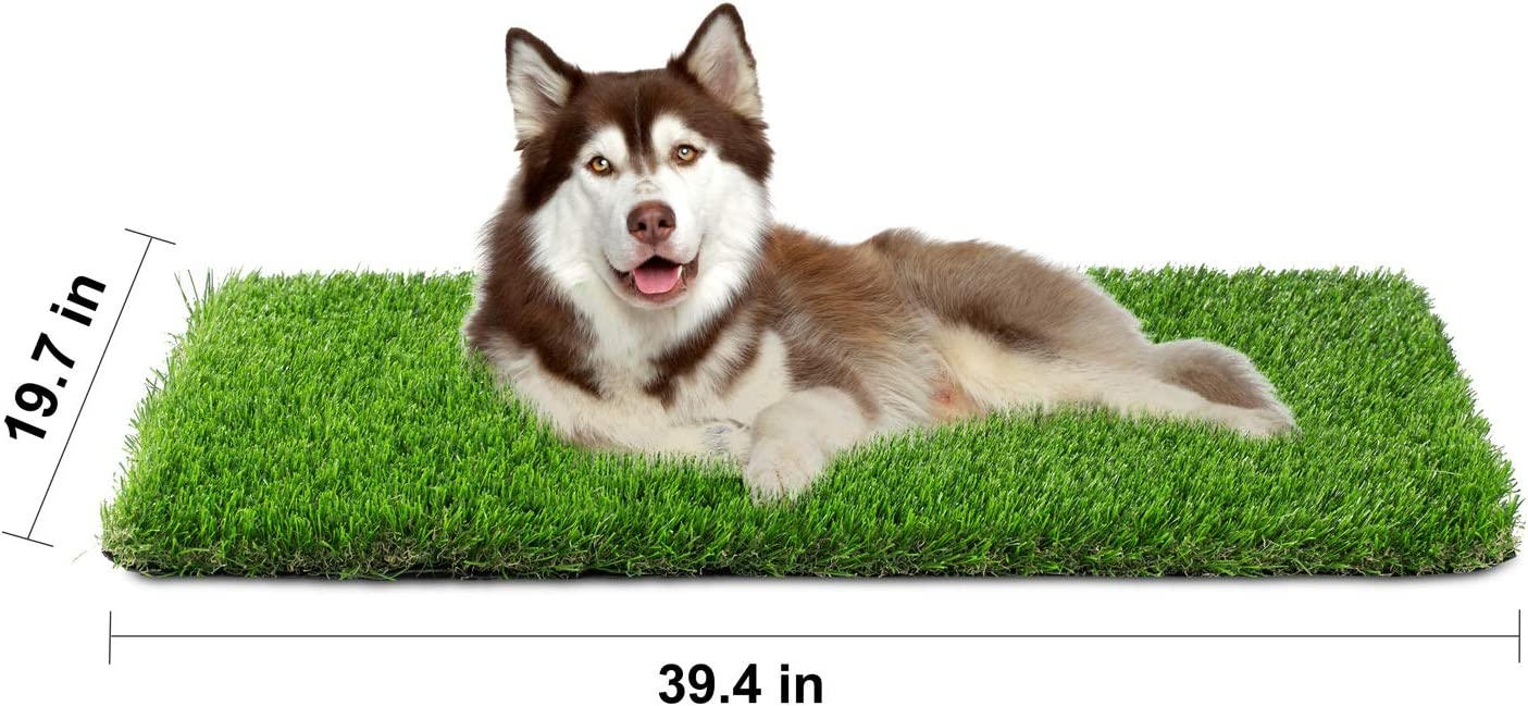 Artificial Grass, Professional Dog Grass Mat, Grass Pee Pad for Pet, Dog Potty Training Rug with Drainage Holes - Easy to Clean, Fake Turf for Indoor & Outdoor Patio Decor