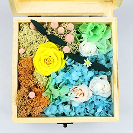 Image Unavailable Not Available For Color Imported Live Flower Gift Box Valentine Birthday